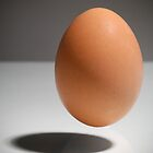 Levitating egg on background with horizon by Josep M Penalver