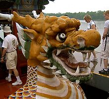 Dragon boat by Nancy Richard