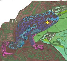 Poison dart frog ink drawing by jessican