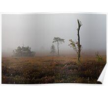 Holt Heath misty morning Poster