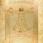 Leonardo Da Vinci Virtruvian Man by thatstickerguy