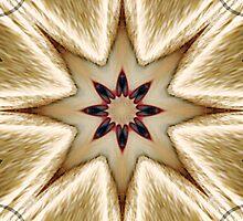 Rising star by Scott Mitchell