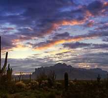 The Morning Glow  by Saija  Lehtonen