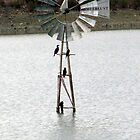 Windmill in the water by Elizabeth Kendall