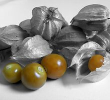 Cape Gooseberry  by Esther's Art and Photography