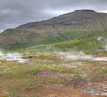 The hot fields of Geysir by Paul Duckett