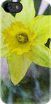 Daffodil by Robert Worth