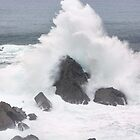 Waves on the coast with force by james633