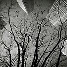 Tokyo perspective by Laurent Hunziker