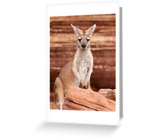 """Euro ~ """"Who's looking at who"""" Greeting Card"""