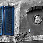 Blues in Campagnano-Italy by Deborah Downes