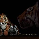 Tiger - colored pencil - drawing by My-world-2