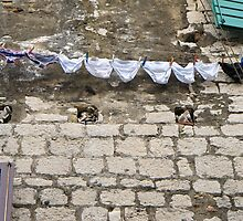 pants drying on a line by Anne Scantlebury