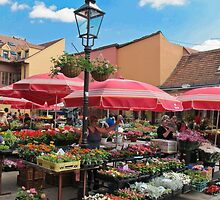 flower market in Zagreb by Anne Scantlebury