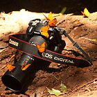 Digital meets Nature. Canon by Karue