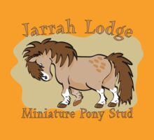 Jarrah Lodge Miniature Pony Stud by Diana-Lee Saville
