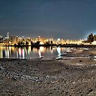 Stanley Park & Vancouver @ Night (HDR Panorama) by James Zickmantel