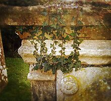Under the Ivy by Peter Vines