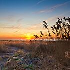 Sunrise at Pegwell Bay by Geoff Carpenter