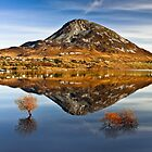Tranquil Errigal - Ireland by Derek Smyth