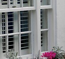 Window craft by Johnathan Bellamy