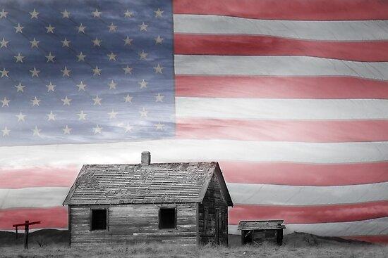 Rustic America by Bo Insogna