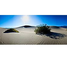 Bathed in Morning Light - Death Valley National Park, California Photographic Print