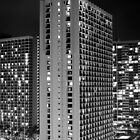 2012 Waikiki Beach, Honolulu HI | City Life by RedDash