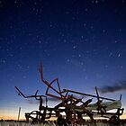Disc Plow Sun Set by Murray Wills