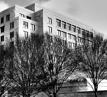 Atlanta Federal Reserve Building II by Scott Mitchell