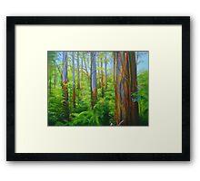 Kallista Mountain Ash Framed Print