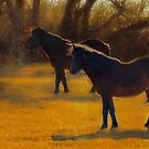 Horses in Fall, Digital art  by Donna Ridgway