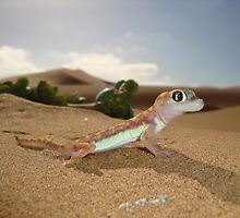 Gecko on Desert Dune - Namibia by Austin Stevens