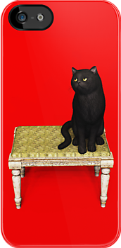 Black Cat on stool iPhone/iPod case by Roberta Angiolani