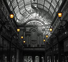 Newcastle's Central Arcade by David Pringle