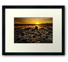 Beach Morning Glory Framed Print