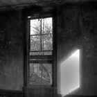 Window From Another Time by James Brotherton