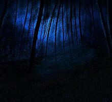Moonlit Forest by Debbie  Adams