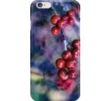 A Colorful Life iPhone Case/Skin