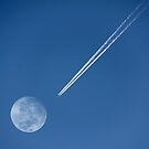 Fly Me To The Moon by Dylan Coombe