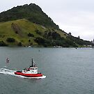 Leaving Tauranga by Marcia Luly