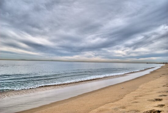 Newport Beach Landscape by Diego  Re