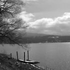 Boat Dock (b) by cudatron
