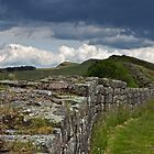 Roman Wall Country by David Pringle