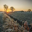Sunshine and Frost by Andrew Leighton