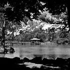 Ringwood Lake by Colin  Ewington