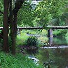 Long Tan Park ... by gail woodbury