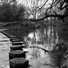 Stepping Stones by Lennox George
