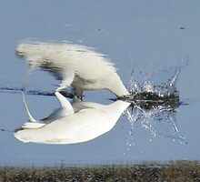 Two worlds collide by BirdOnAFire