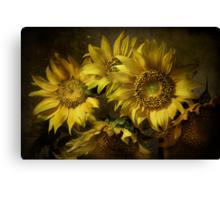 Suns Canvas Print
